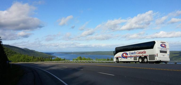 Bus Tours From Rochester Ny To Washington Dc